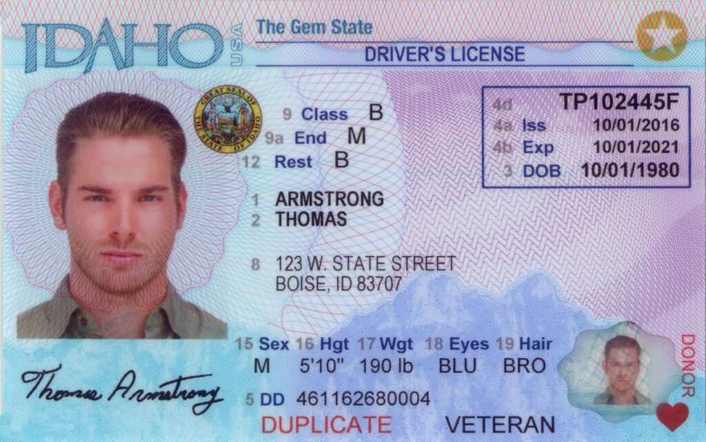 Idaho Driver's License