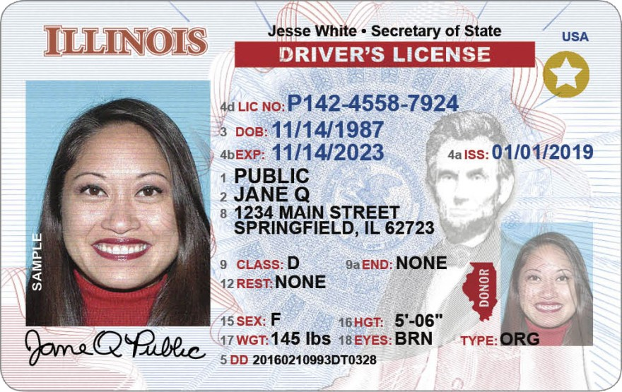 state of illinois drivers licenses