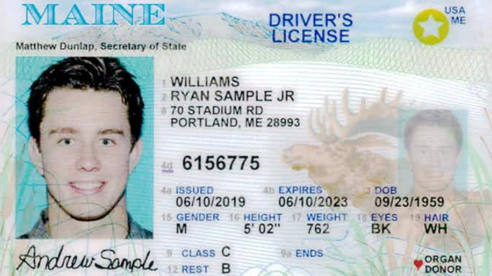 Maine state drivers licenses