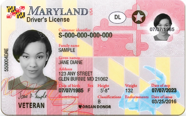 Maryland state drivers licenses