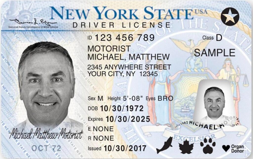ny state drivers licenses