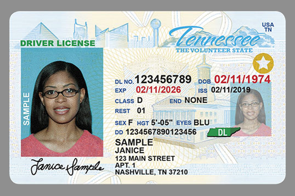 Tennessee state drivers licenses