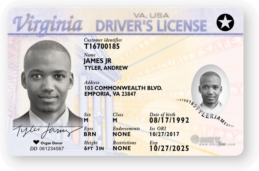 state drivers licenses
