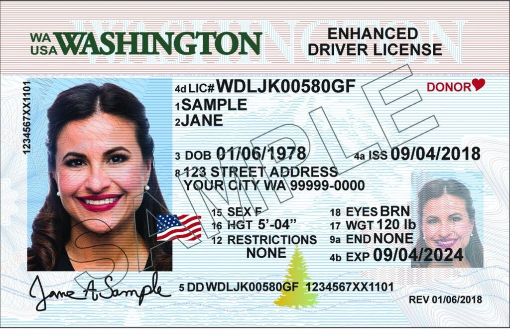 wa state drivers licenses